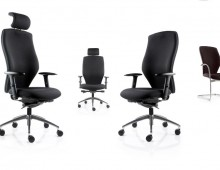 Flame Executive Office Seating